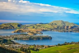 Dunedin-town-and-bay-as-seen-from-the-hills-above-South-Island-New-Zealand.jpg